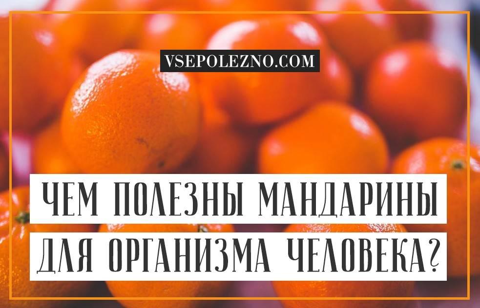 Чем полезны мандарины для организма человека?