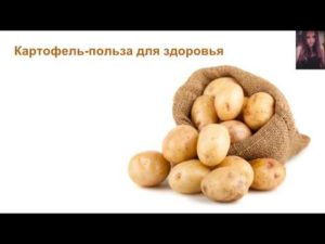 Картофель — польза и вред для здоровья человека