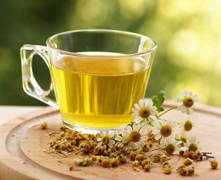 Ромашковый чай – польза и вред для женщин