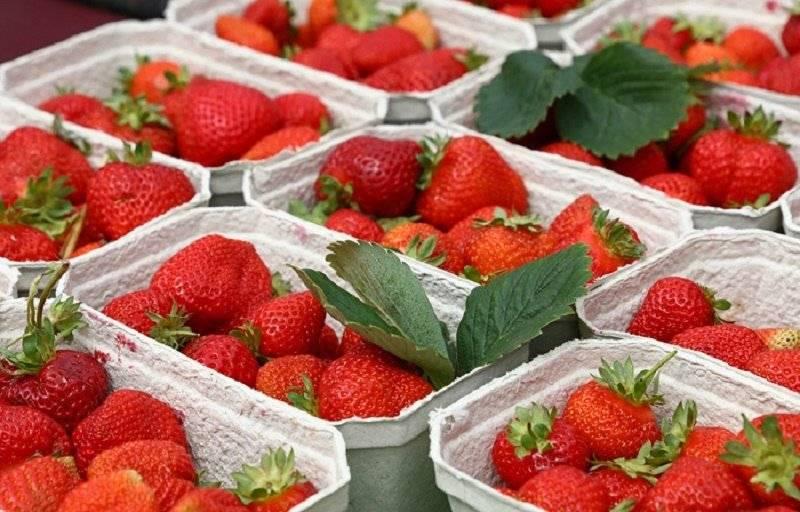 Польза клубники, рецепты масок с ягодой