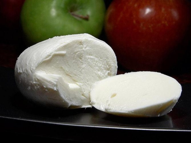 Сыр: польза и вред для организма