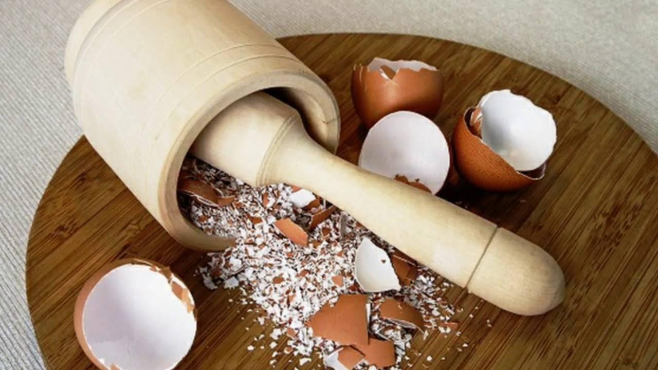 Вред и польза яичной скорлупы. употребление яичной скорлупы