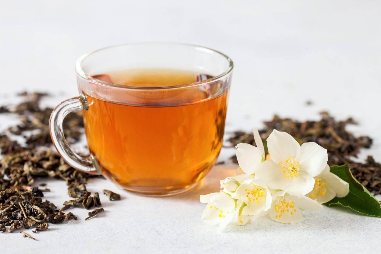 Жасмин и жасминовый чай: полезные свойства, противопоказания