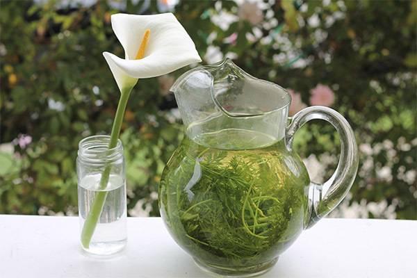 Морковный чай: напиток для вашего здоровья