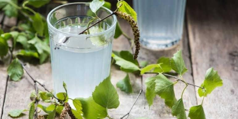 Польза и вред берёзового сока для организма