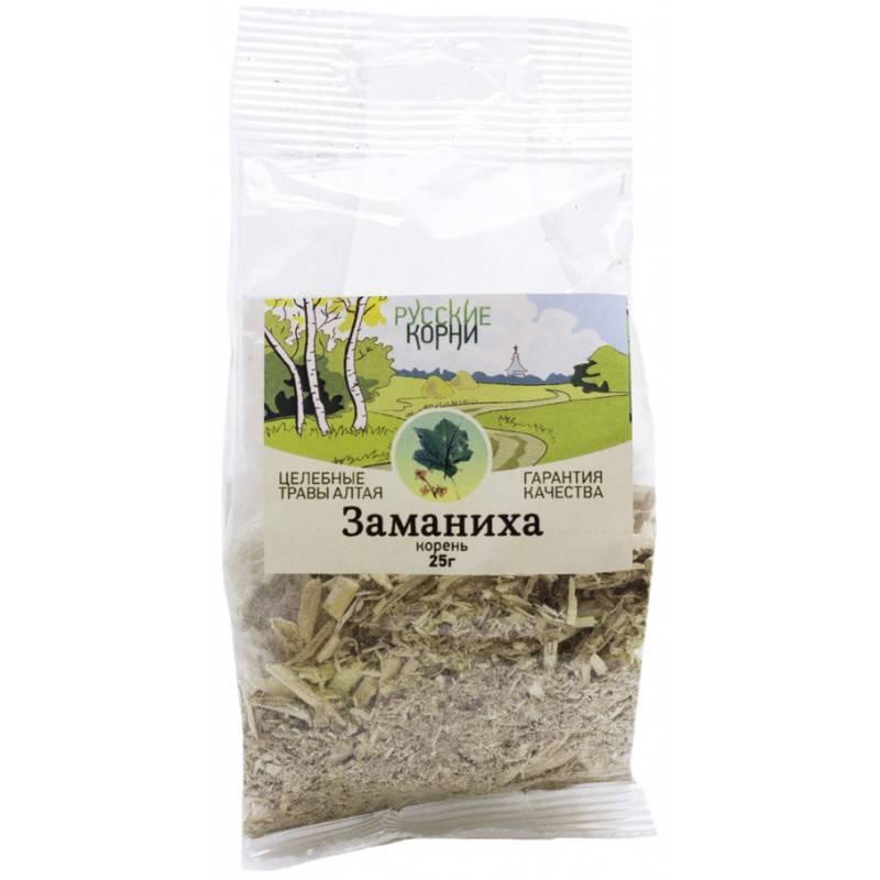 Заманиха: описание, полезные свойства, применение лечебных свойств растения