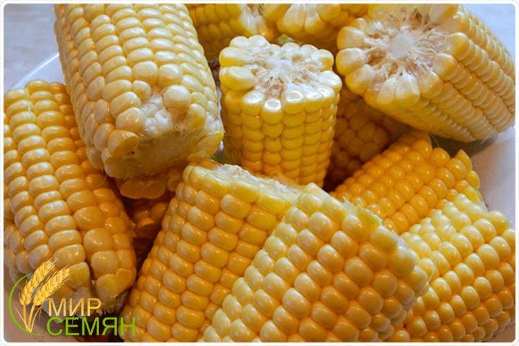 Можно ли есть кукурузу сырой? какая кукуруза полезнее - сырая или вареная?