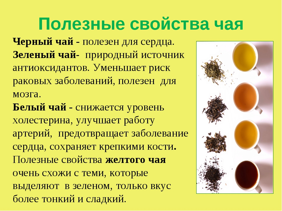 Черный чай, польза и вред для здоровья человека