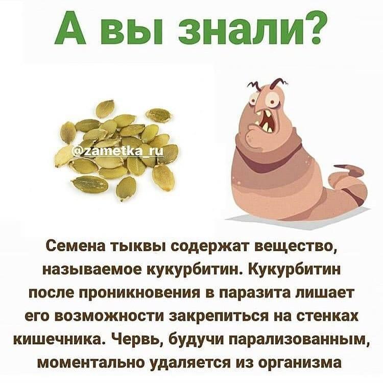 Тыквенные семечки: простой продукт для здоровья всего организма!