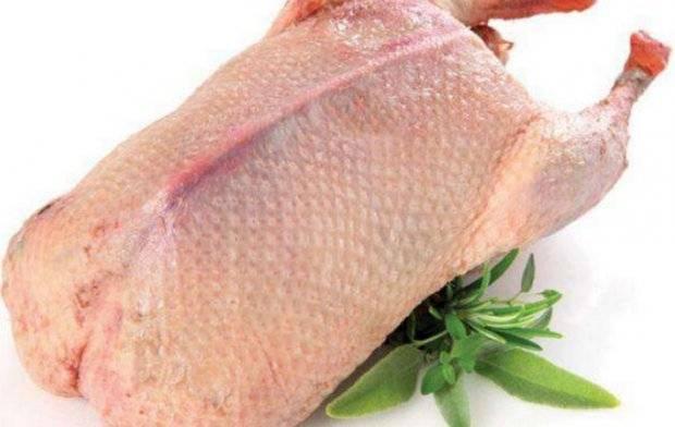 Польза и вред говядины для организма