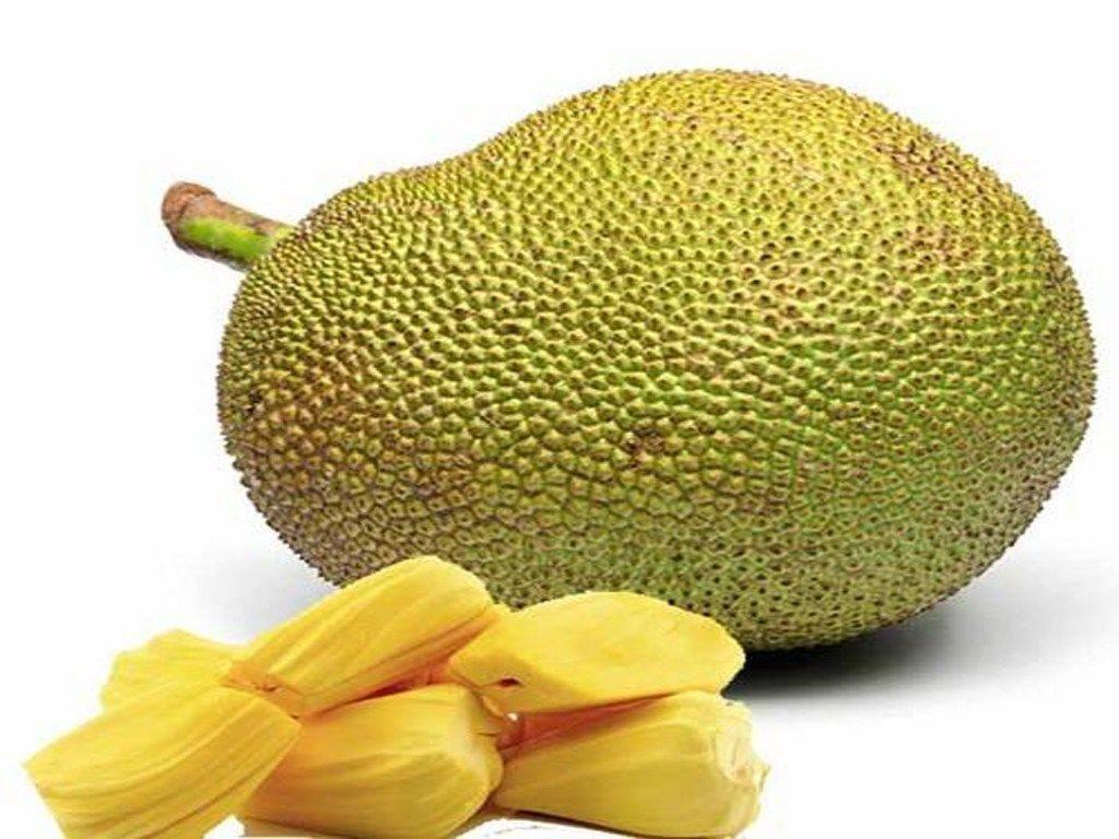 Джекфрут: полезные свойства, вред и калорийность