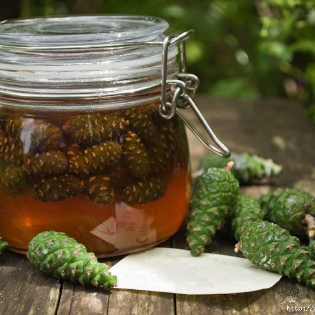 Лечебное варенье из шишек сосны, рецепты и польза