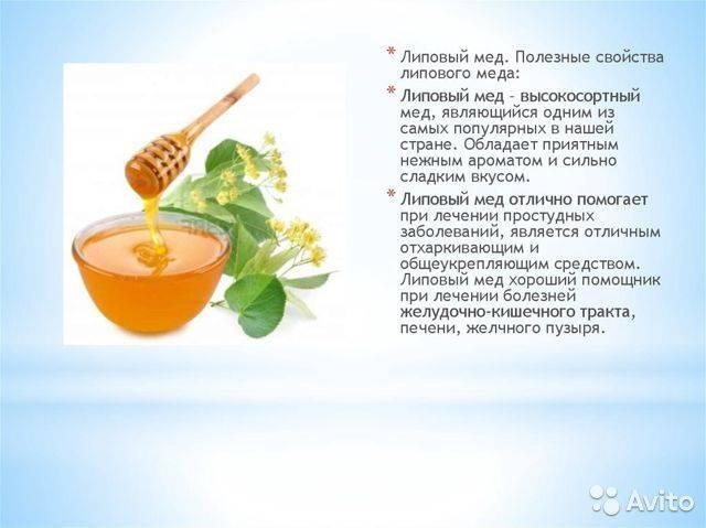 Полезные свойства липового мёда