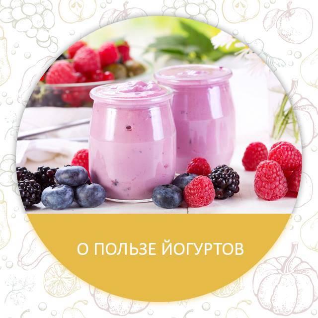 О пользе йогурта для организма человека: свойства, состав, как выбрать