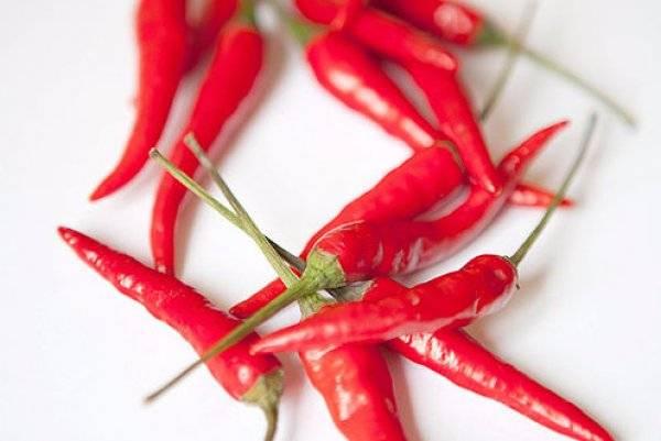 Вред и польза перца чили для организма, нормы его употребления