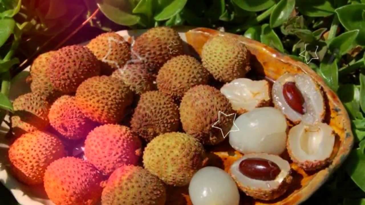 Личи: экзотика на нашем столе, польза и вред для здоровья китайской сливы