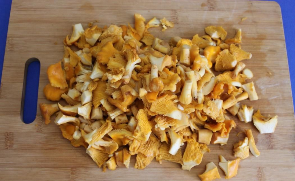 Польза и вред грибов лисичек для организма человека
