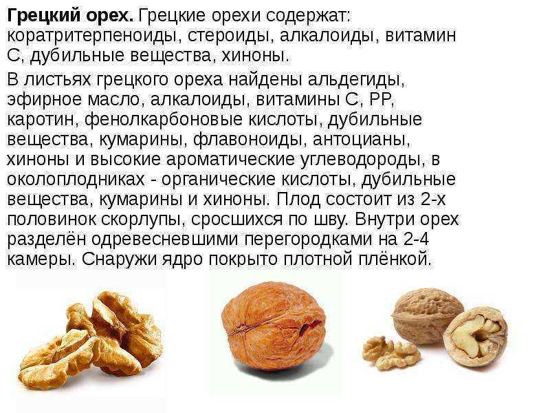 Грецкий орех. польза и вред