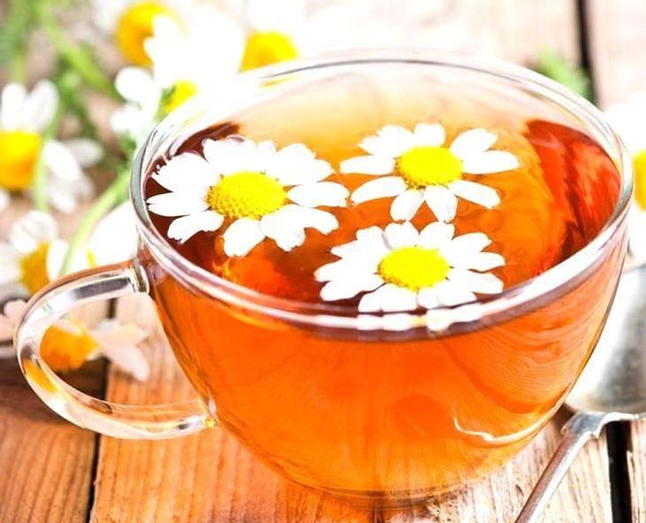 Польза и вред ромашкового чая