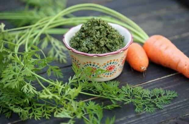 Лечение морковной ботвой: польза и рецепты народной медицины