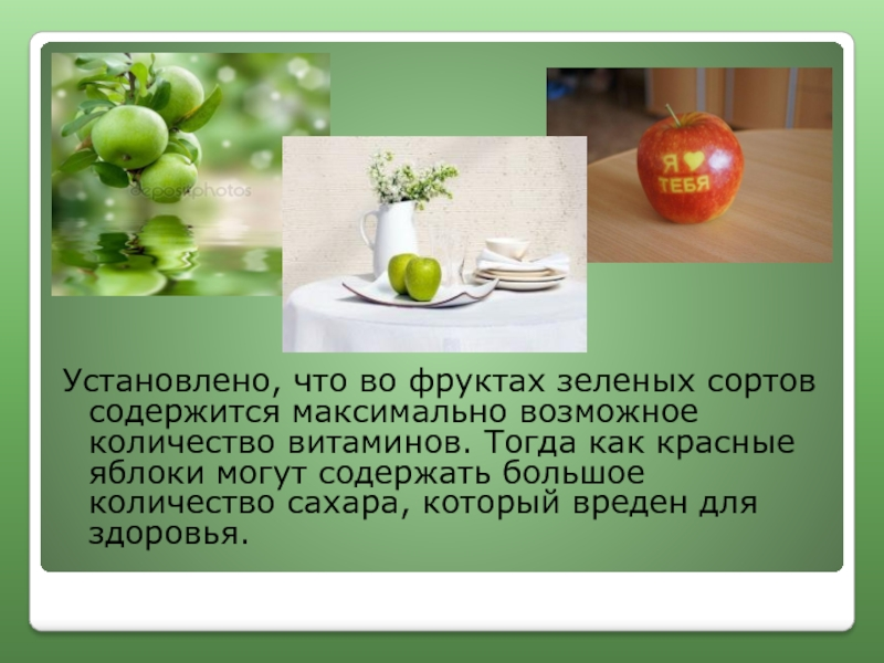 Польза и вред яблок для организма человека
