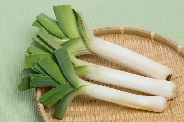 Лук порей – польза и вред зеленого овоща