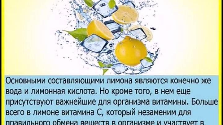 Лимон: полезные свойства и противопоказания, применение, рецепты