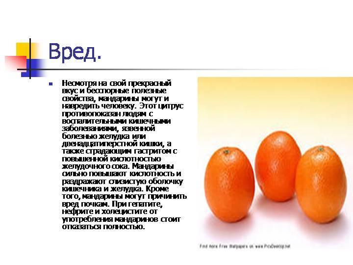 Мандарины: польза и вред для здоровья женщин, мужчин и детей
