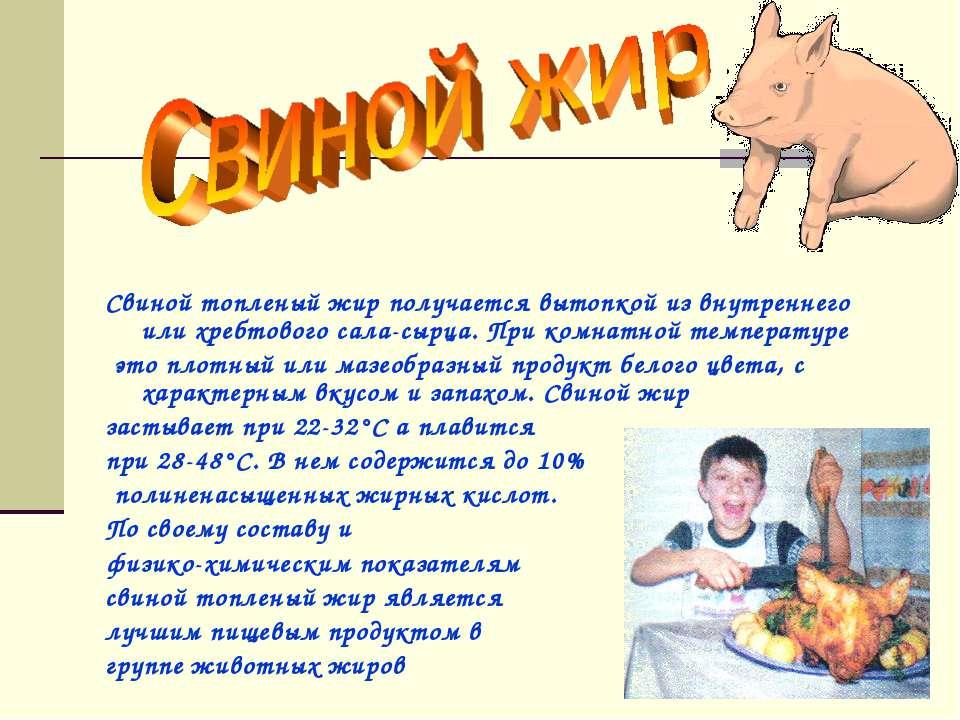 Свиное сало — польза и вред для здоровья организма