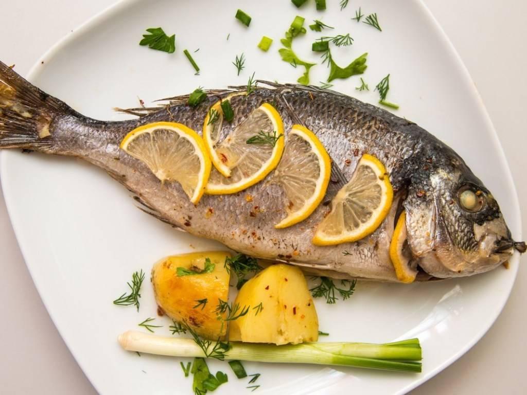 Рыба дорадо: польза и вред, описание, рецепты приготовления. рыба дорадо: калорийность и бжу, польза и вред для организма, рецепты дорада речная или морская рыба