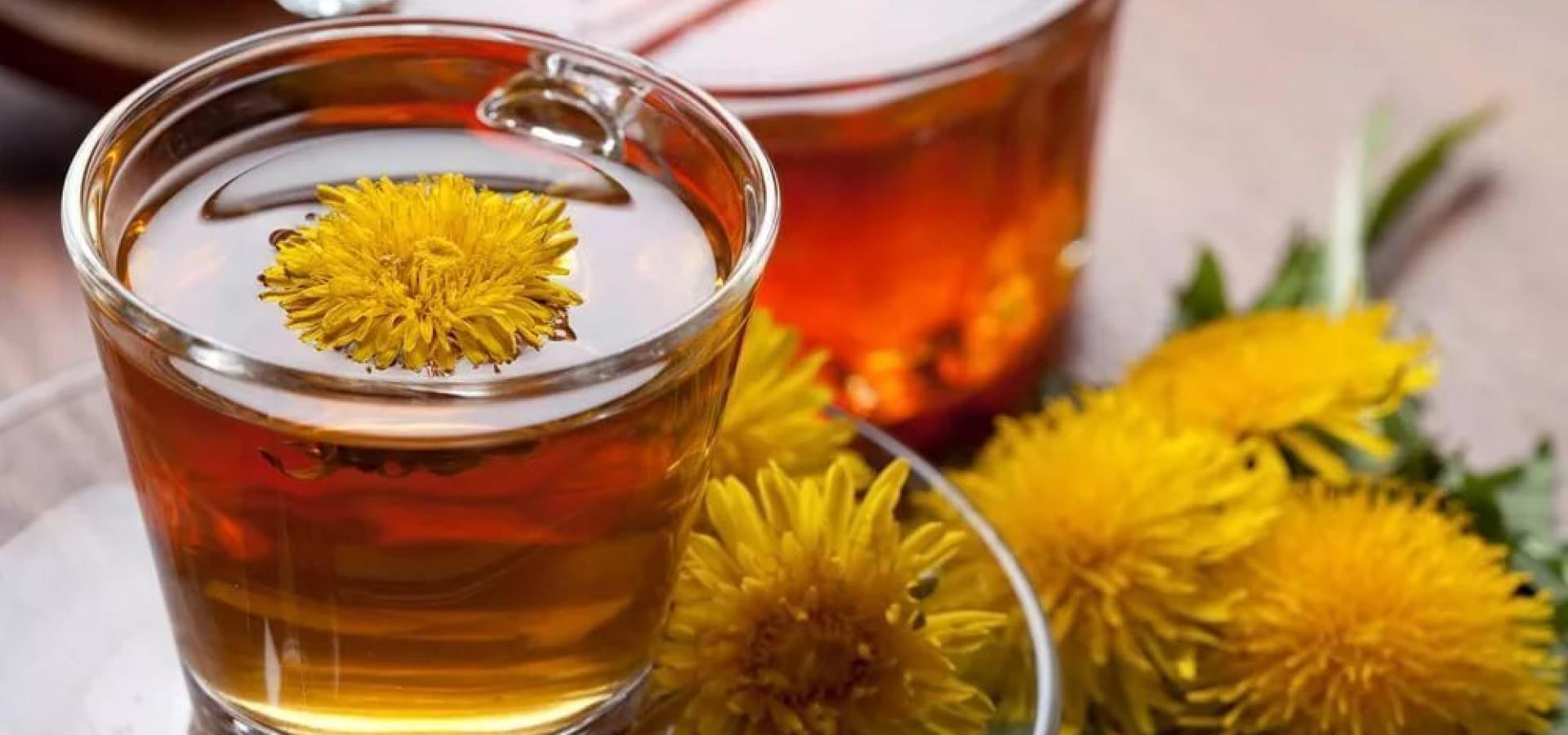 Чем полезен чай из одуванчиков и как его правильно заваривать