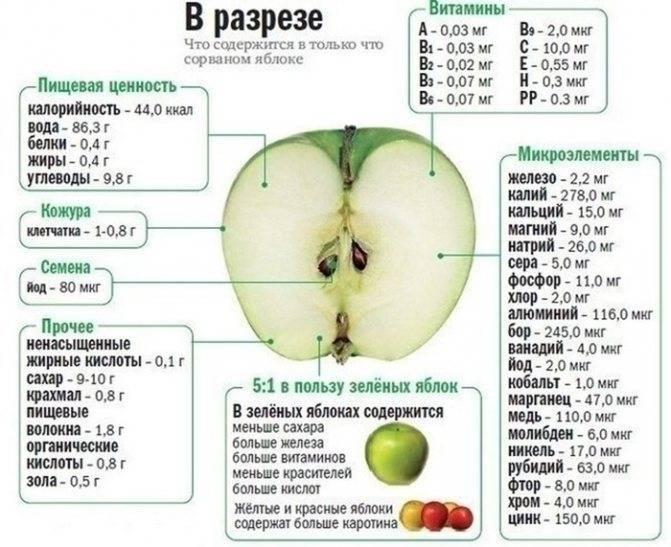 Можно ли употреблять яблоки при грудном вскармливании в первый месяц?