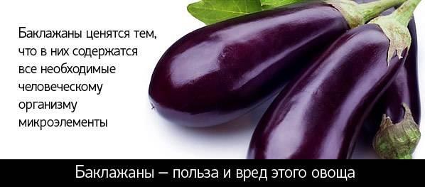 Баклажаны — польза и вред овоща для здоровья