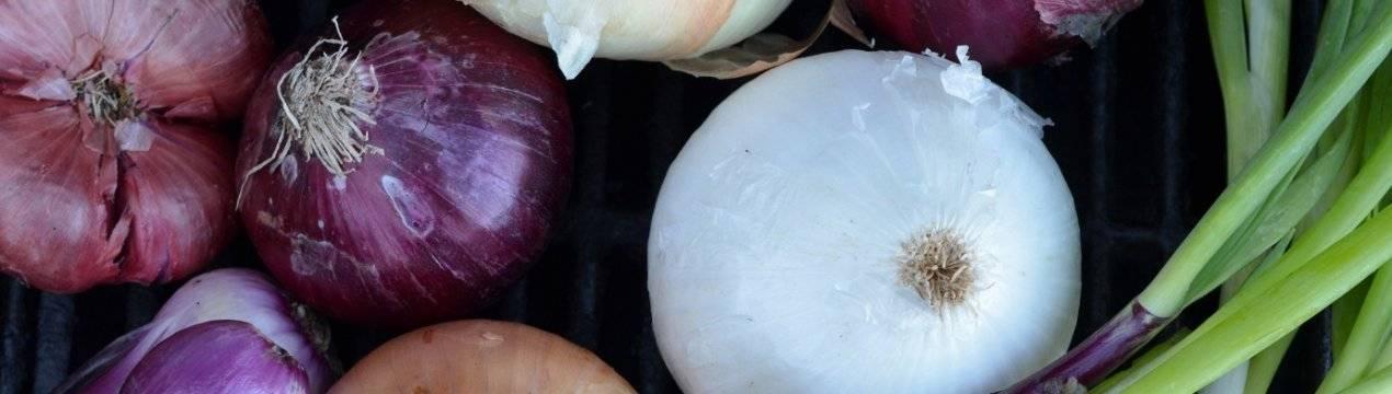 Все о пользе красного лука: почему этот овощ должен быть на каждом столе