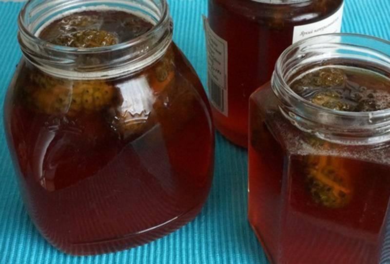 Как варить варенье из сосновых шишек: 7 рецептов, а также польза и противопоказания
