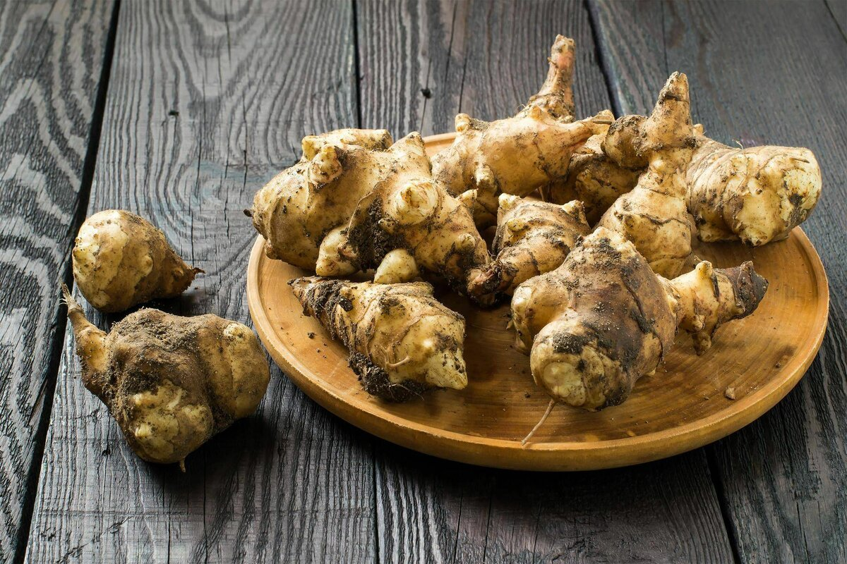 Польза и вред топинамбура для здоровья, полезные рецепты