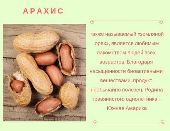 Арахис польза и вред для организма