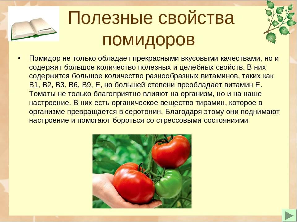 Чем полезны помидоры для организма
