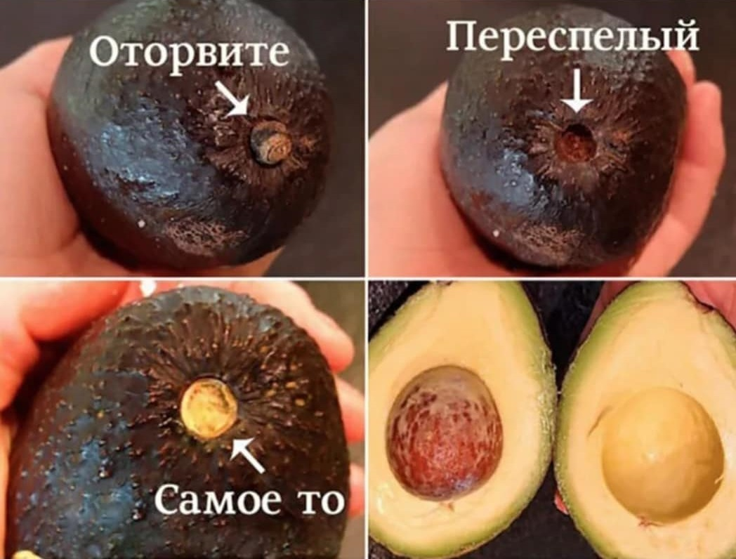 Как правильно выбрать спелый и вкусный авокадо