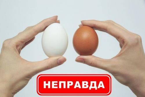 Польза яиц при беременности и грудном вскармливании