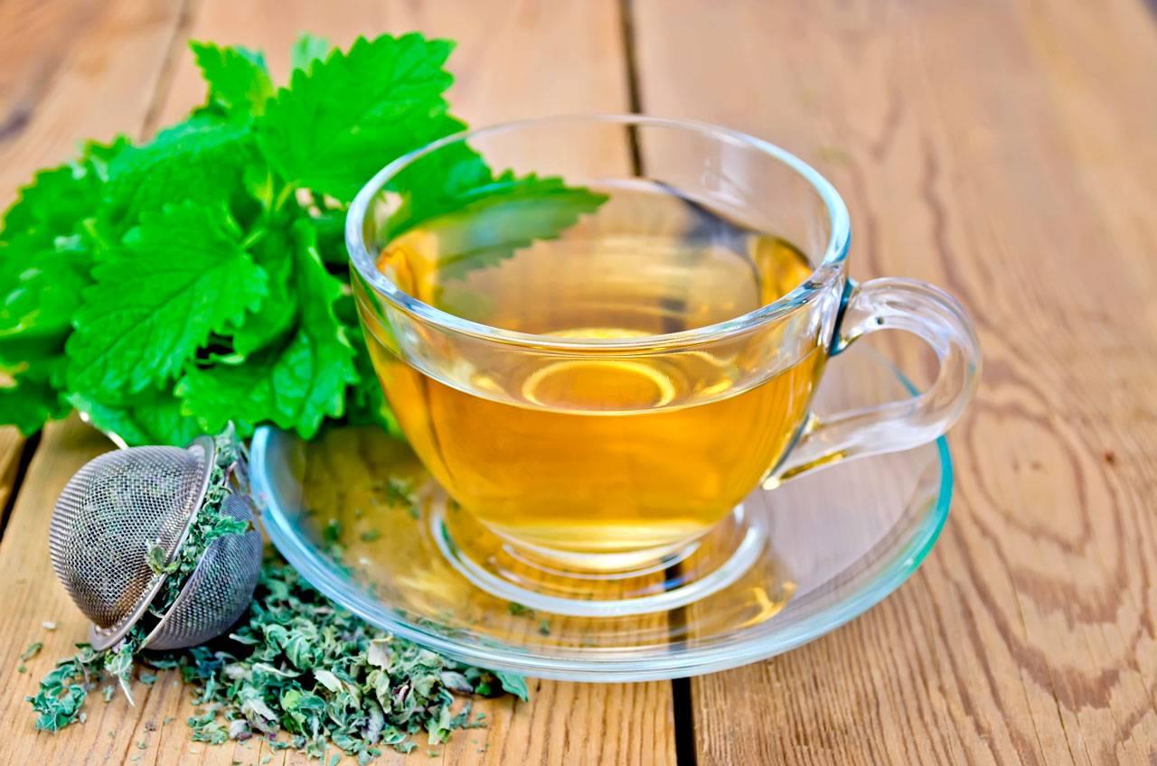 Чай с мятой для женщин: как правильно приготовить напиток?
