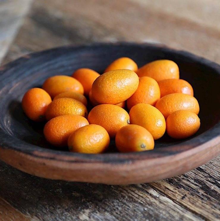 Вяленый кумкват: полезные свойства и вред, калорийность