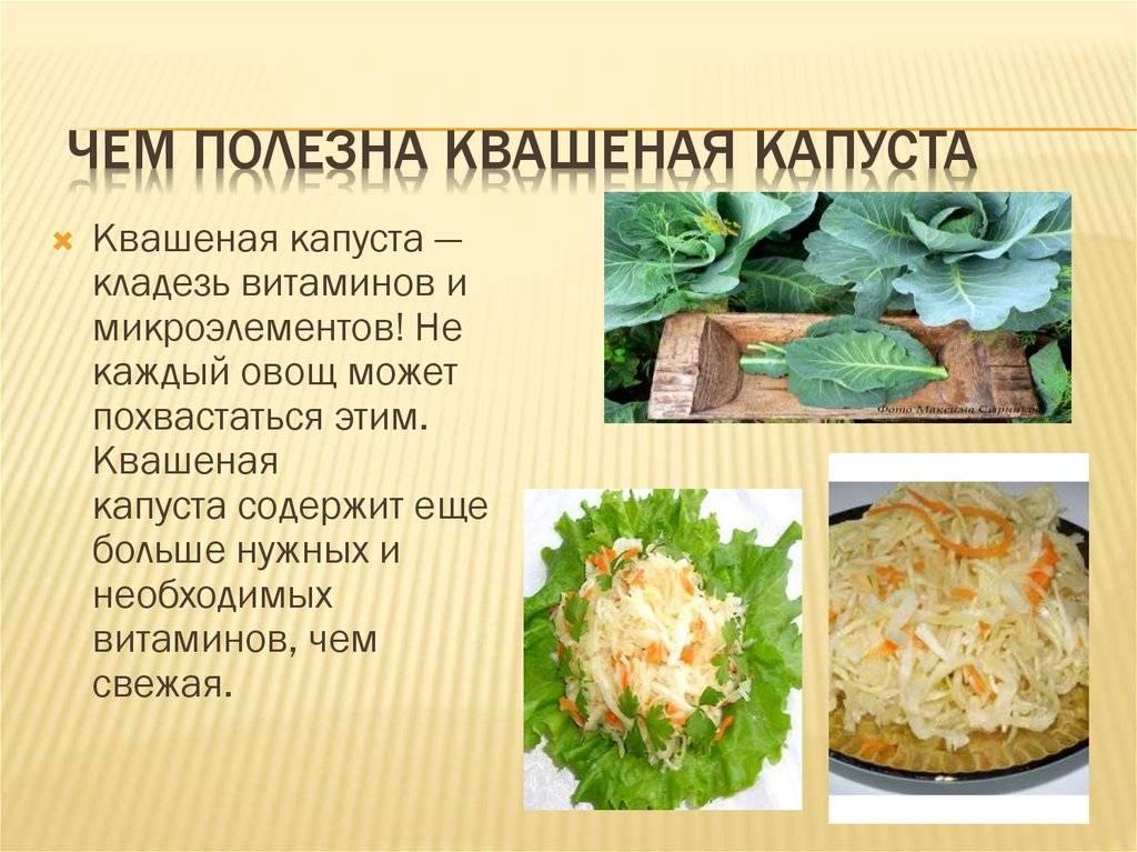 Вред квашеной капусты для организма