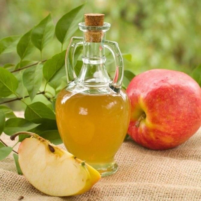 Яблочный сидр: польза и вред для мужчин, сколько градусов, какой процент алкоголя