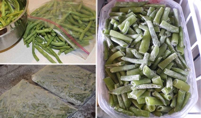 Как хранить фасоль – делаем заготовки на зиму
