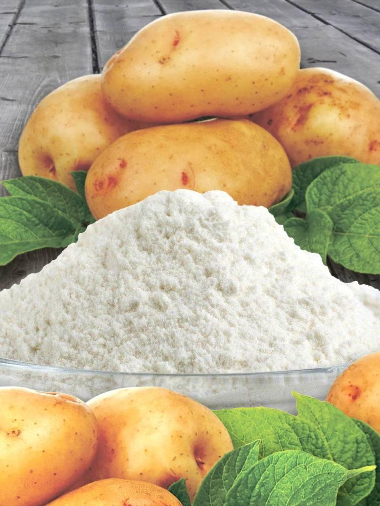 Польза и вред картофельного крахмала для организма