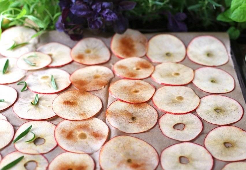 Сушеные яблоки в домашних условиях