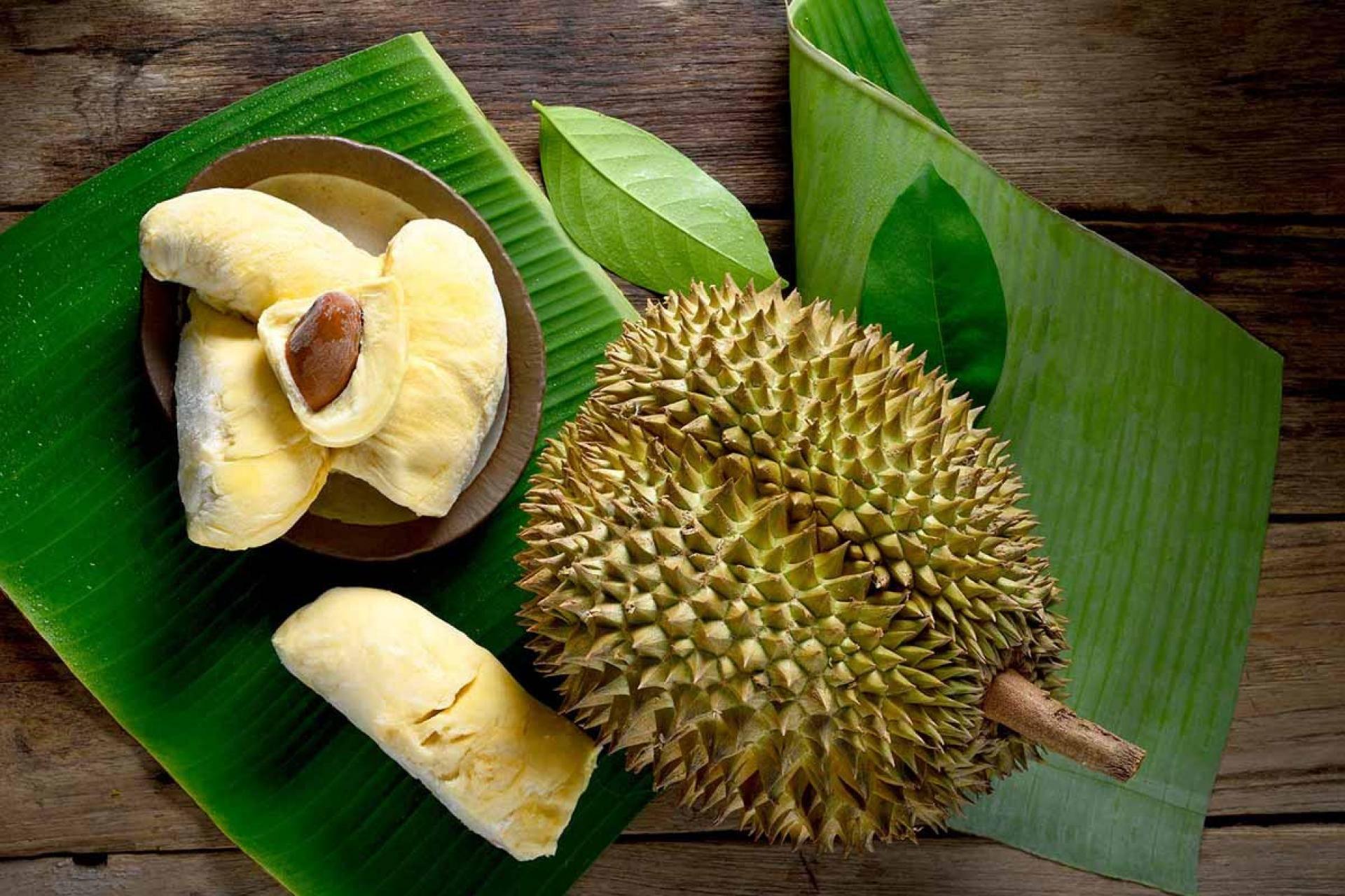 Дуриан (фрукт): полезные свойства, отзывы, фото. как едят дуриан?