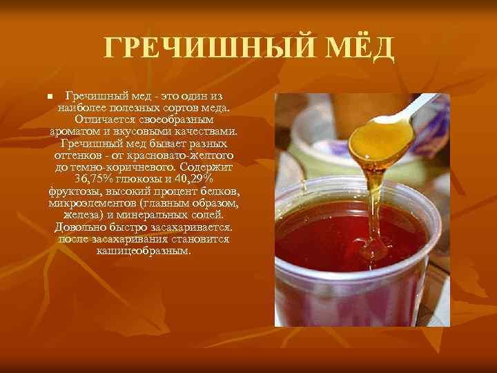Польза гречишного меда