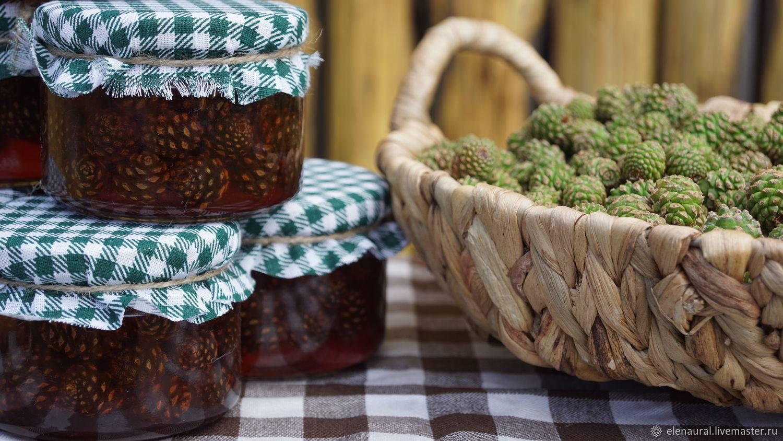 Необычный деликатес: варенье из сосновых шишек — его польза и вред для здоровья человека